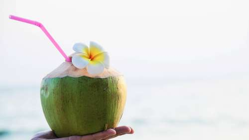 Coconut water: A refreshing drink with a plethora of benefits