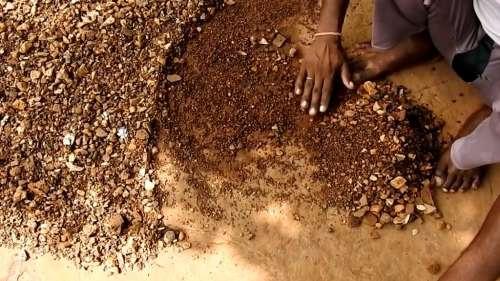 Watch: টাকা মাটি, মাটি হিরে! ২ বছরে ৬ বার জমি খুঁড়ে হিরে পেলেন মধ্যপ্রদেশের কৃষক