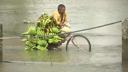 Bihar Flood: बिहार के करीब 35 लाख लोगों पर बाढ़ का प्रहार, हाजीपुर में बर्बाद हुई केले की खेती