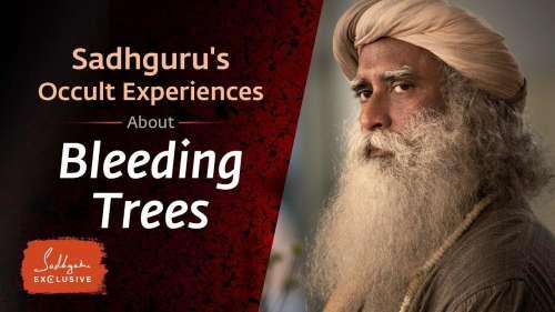Sadhguru's occult experiences – From Sadhguru exclusive