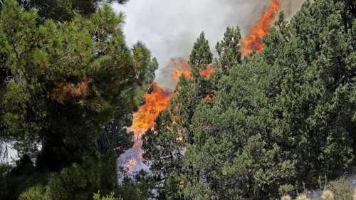 Deadly wildfire in Turkey