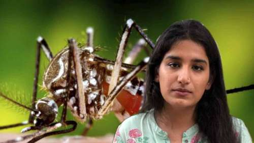 Everything you need to know about Zika virus reported in Kerala