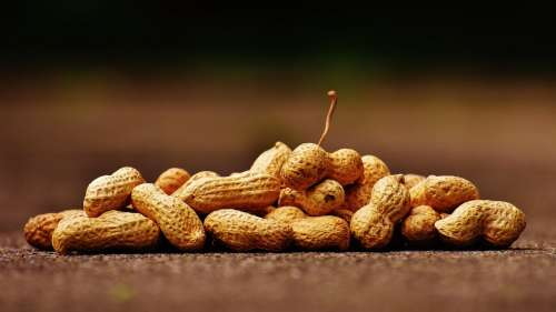 Peanuts are not only for mindless snacking; they keep your heart strong too!