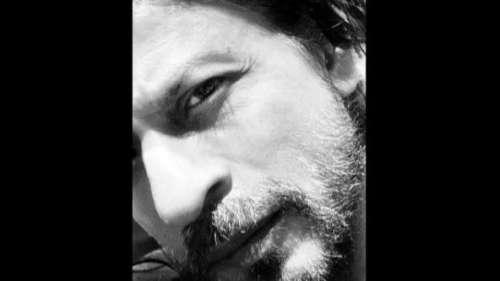 काम पर लौटने को तैयार हैं शाहरुख, बोले- वक्त आ गया है...दाढ़ी कटवा लूं