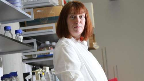 'Covid is going to just become a cold': creator of AstraZeneca vaccine, Sarah Gilbert