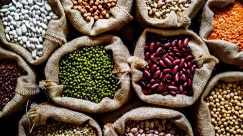 Feeling fatigued or breathless? Iron rich foods might be the answer to your prayers