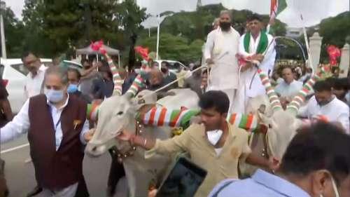 Karnataka Congress: बैलगाड़ी से विधानसभा पहुंचे डीके शिवकुमार और सिद्धारमैया, महंगाई के खिलाफ हल्ला बोल