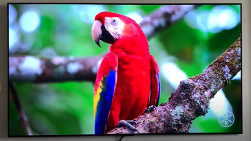 LG GX 65-inch OLED TV review