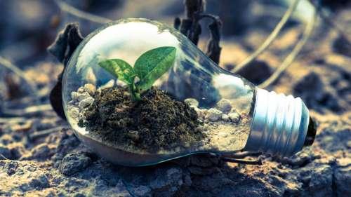 World Environmental Health Day: Prioritising healthier communities
