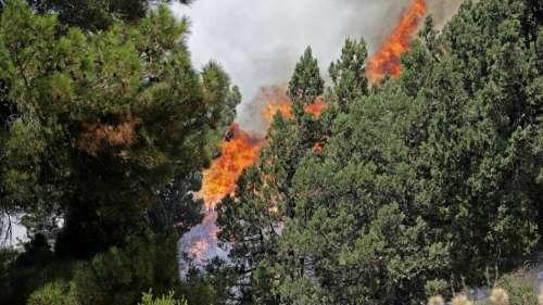 Turkey Wildfire: दक्षिणी तुर्की के जंगलों में लगी भीषण आग, खाली कराए गए सैकड़ों गांव