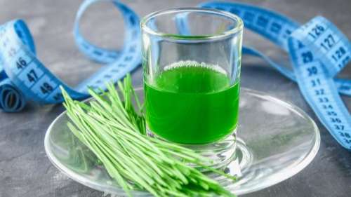 Wheatgrass for immunity