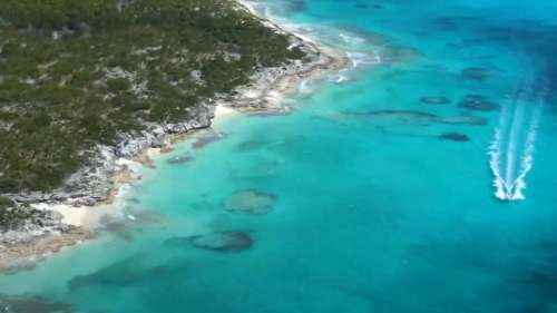 This private island in the Bahamas is up for grabs