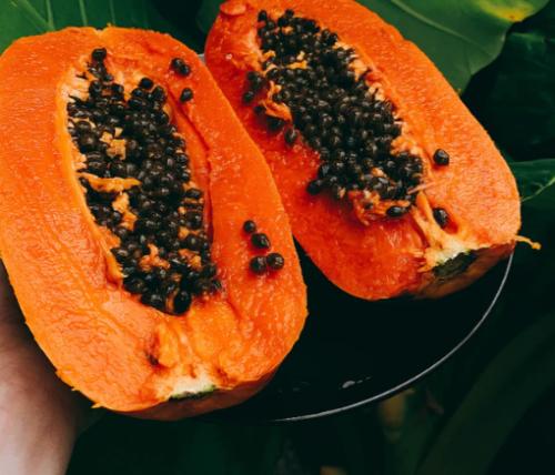 The powerhouse of vitamin C