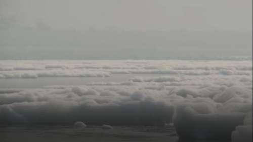 यमुना नदी झेल रही प्रदूषण की मार, बह रहा जहरीला झाग