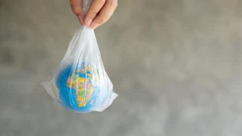 This International Plastic Bag Free Day, it's time to go eco-friendly!