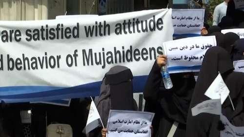 Taliban: ১২ জন মহিলাকে কাজে ফেরার অনুমতি দিল তালিবান, তবে বিশেষ কাজের জন্যই ছাড়