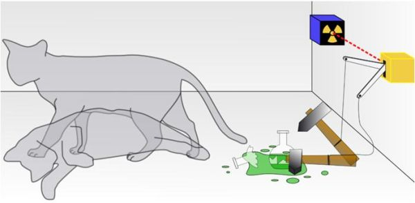 Schrödinger's Cat Experiment (Image Source: www.wikipedia.org)