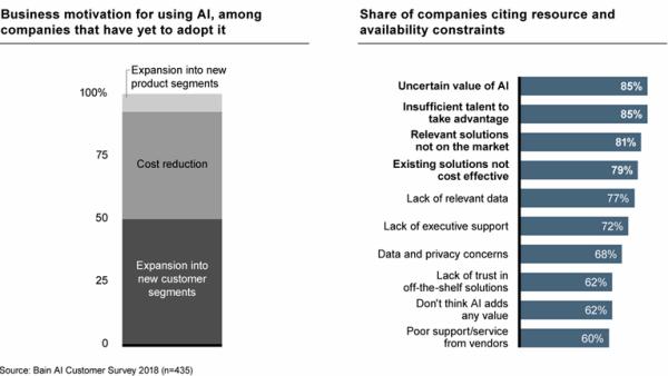 Bain AI Customer Survey (2018)