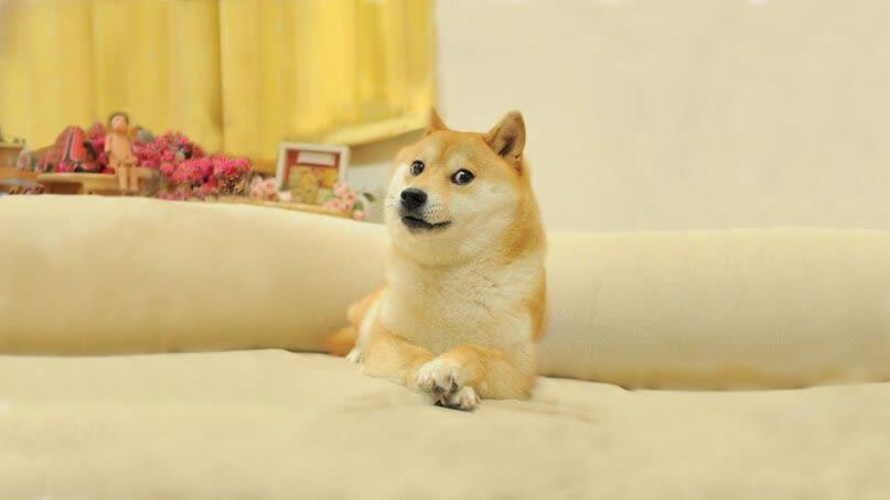 что такое dogecoin история особенности перспективы криптовалюты