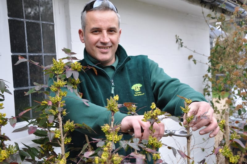 Gardening Business Owner Hersham Steve Frise