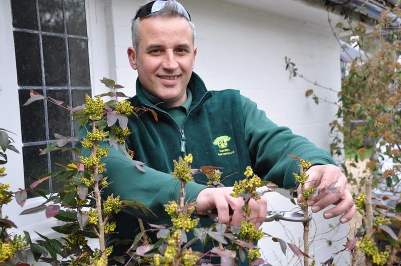 Gardening Business Owner Hersham Steve Frise