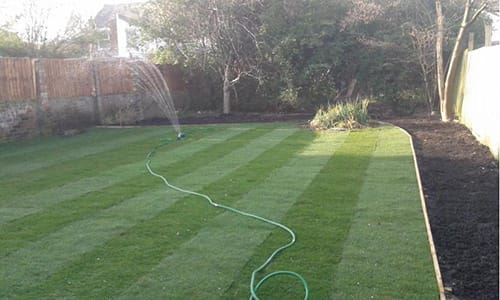 Watering the Grass in South East London