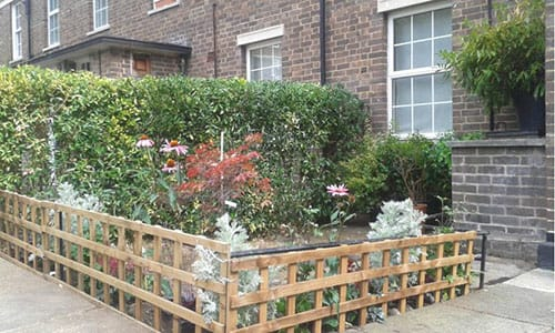 Front Garden Maintenance Service in South East London