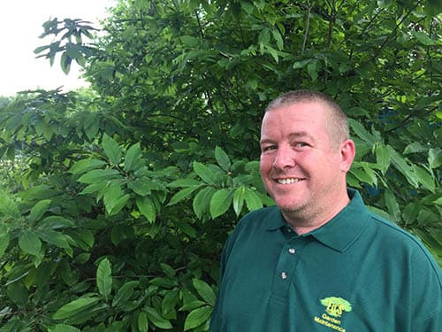 Paul Wellington's Gardening Services in Thurrock