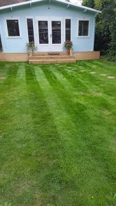 Freshly re-turfed lawn in Raynes Park by Ed's Garden Maintenance Gardener, Kevin Gallacher