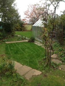 Mowing the Lawns to remove the wilderness by Ed's Garden Maintenance