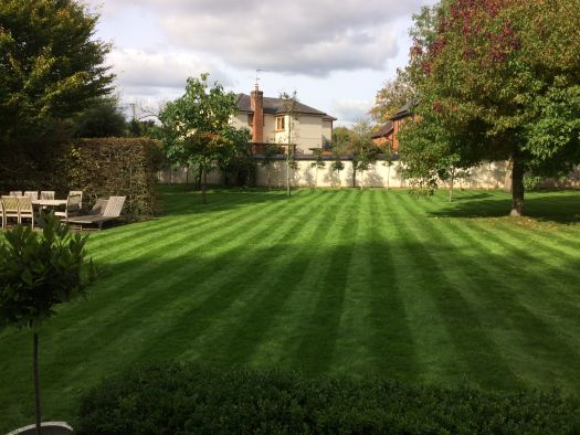 Great garden services - beautiful stripy lawn