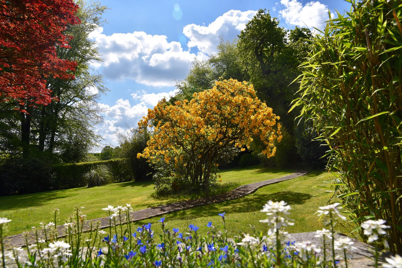 Beautifully mowed garden with stunning flowersStunning garden with flowers