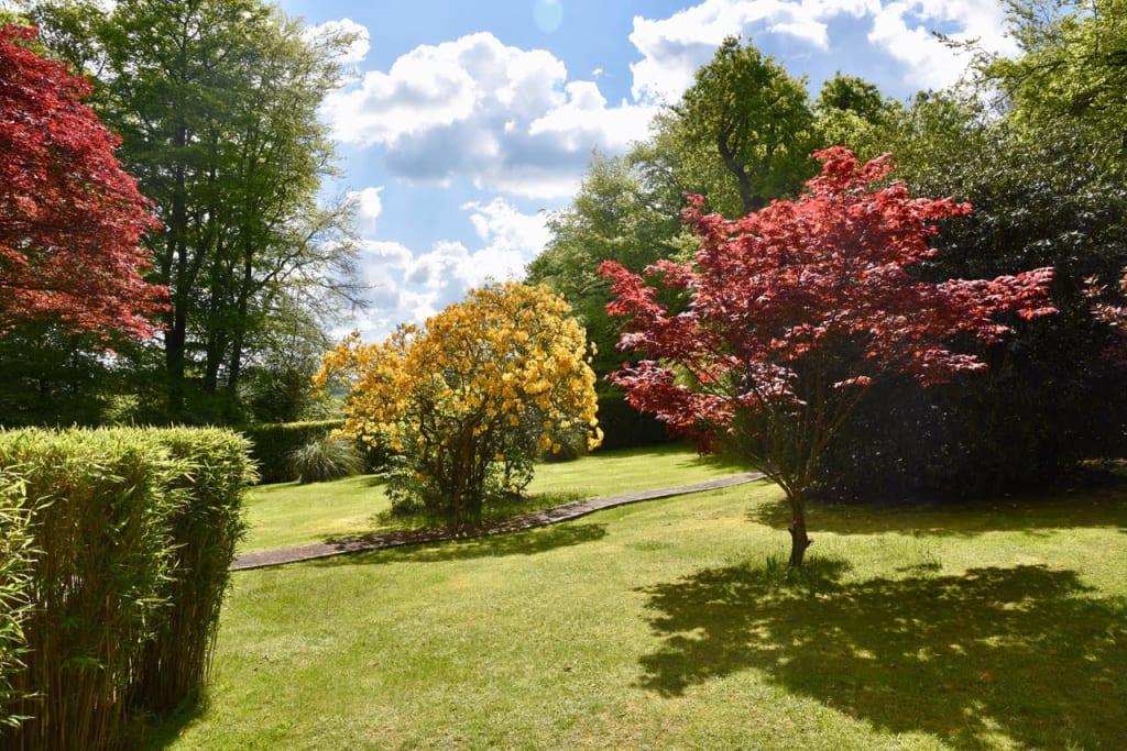 Bob's customer's beautiful garden with beautifully mown lawn