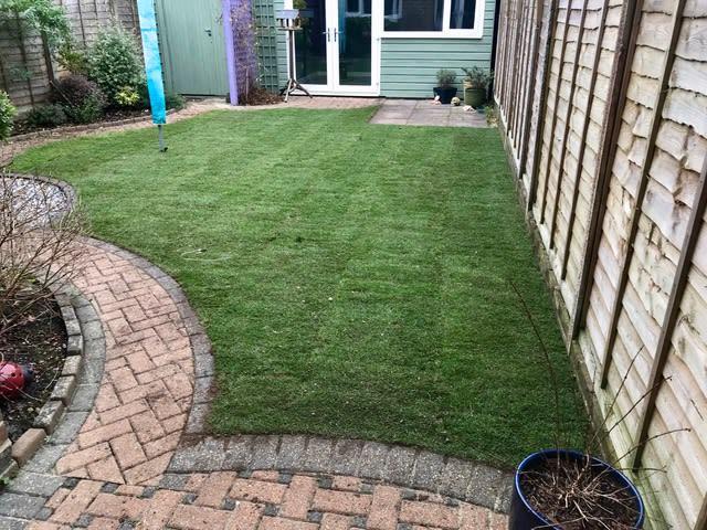 newly laid turf