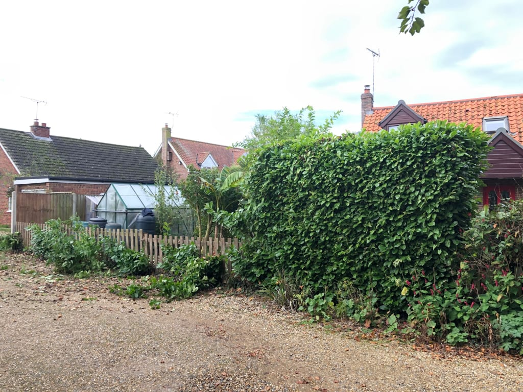 Before photo of Norfolk fencing project