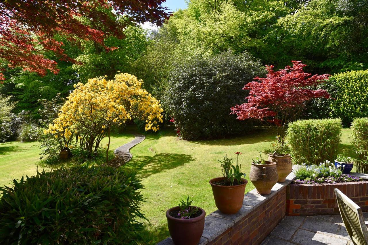 Garden view from a terrace