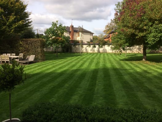 Great garden services - beautiful stripy lawn