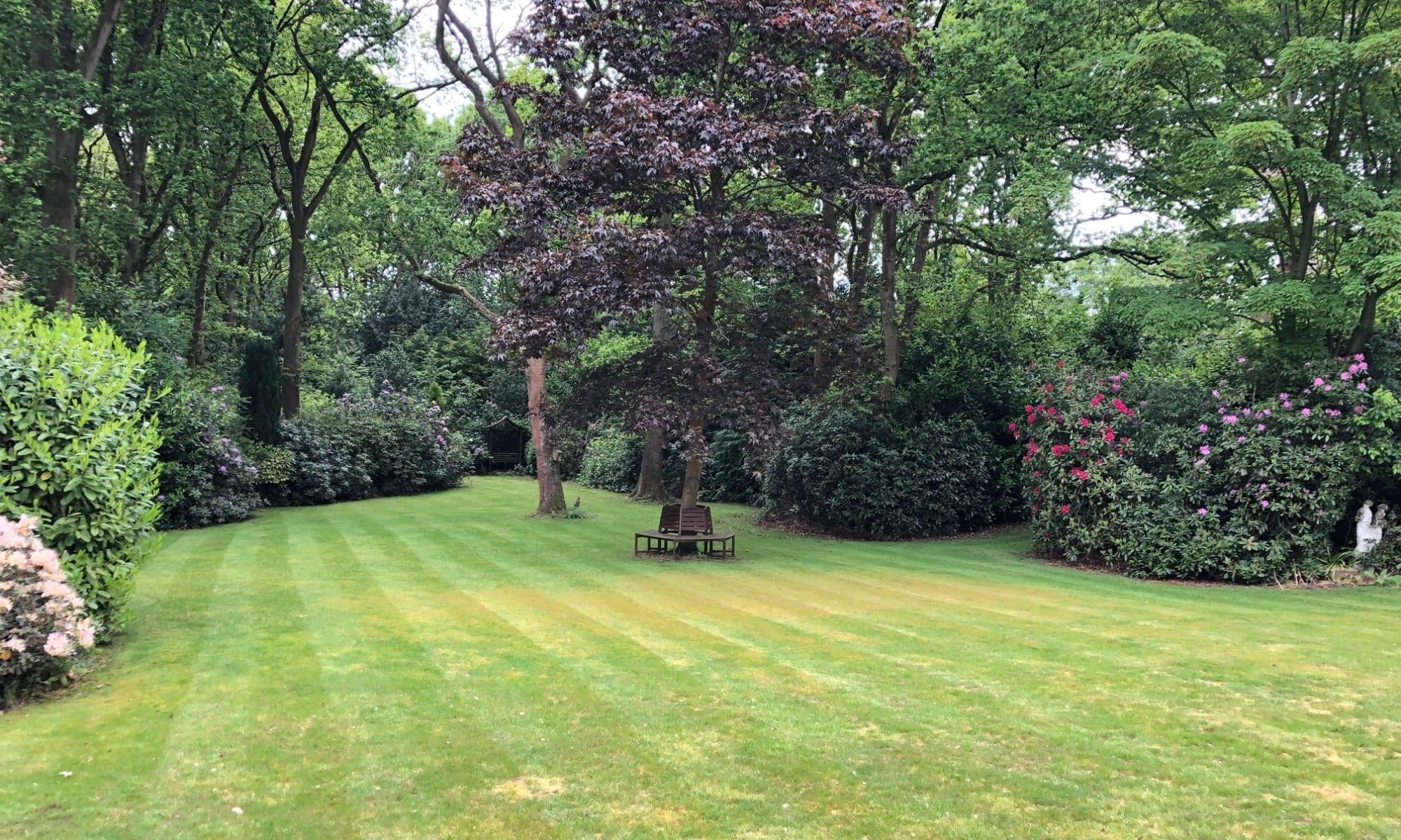 Beautiful large lawn in rural Norfolk