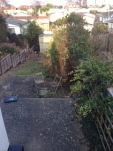 A tired overgrown garden in need of attention.