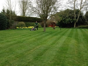 Mowing Lawns in St Ives with Ed's Garden Maintenance