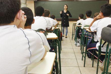 Estudo revela como funciona aprendizagem por observação
