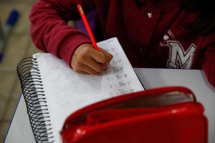 Matrículas da rede estadual de SC iniciam dia 19 de novembro
