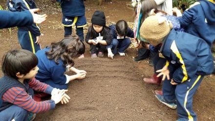 O contato com a natureza e as descobertas livres