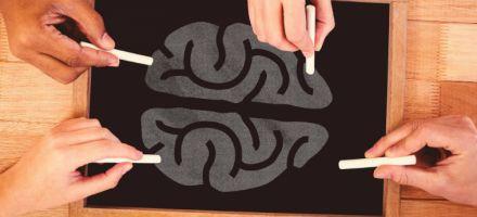 'Maior desafio é tornar a profissão de professor intelectualmente atrativa'