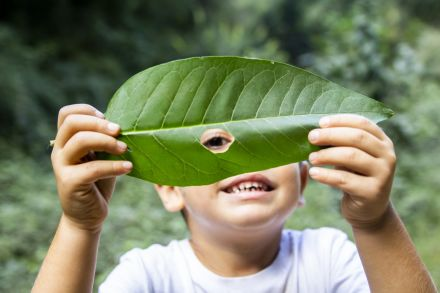 4 atividades para brincar na natureza