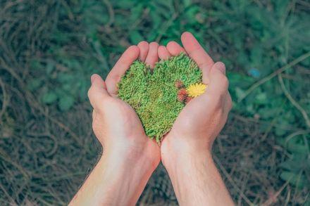 Trabalhar com meio ambiente é para você?
