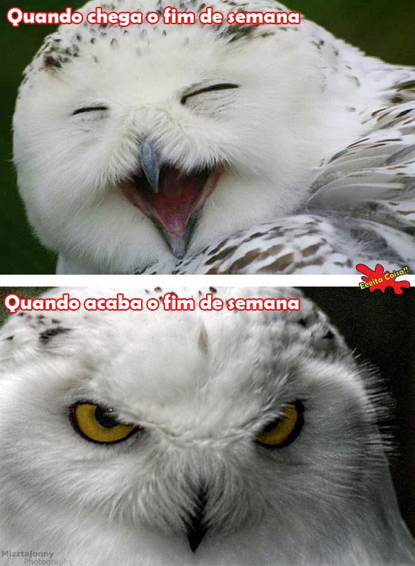 Sua reação quando...