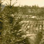 Thumbnail of Sutherland's orchard and Lavenders place, Eastsound, WA