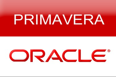 Curso Oracle Primavera P6