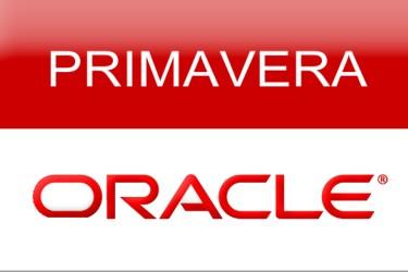 Curso Oracle Primavera P6 Intensivo Sabado